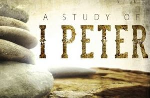 Bible Study with Pastor Jay. I Peter begins October 15 and continues every Tuesday through November 19. 1-2pm in the Oasis Room at Hope.